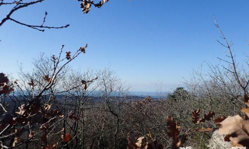 Monte San Leonardo – 29 dicembre 2019
